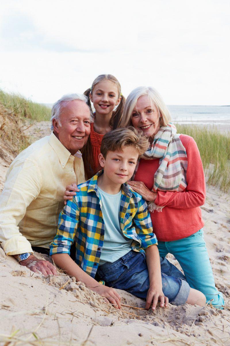 grand rapids grandparents rights attorneys van den heuvel law