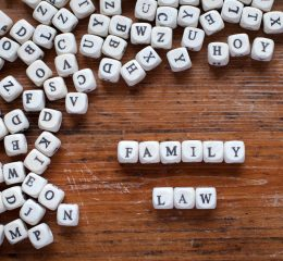 words spelling out family law representing the cases a grand rapids top family law lawyer handles