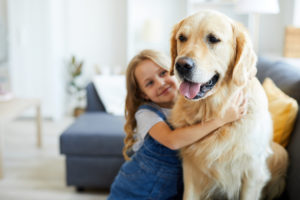 Little girl hugging family labrador dog, for help with custody issues see a Grand Rapids divorce Attorney.